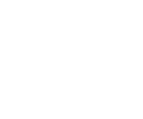 Newcastle Art Gallery Foundation